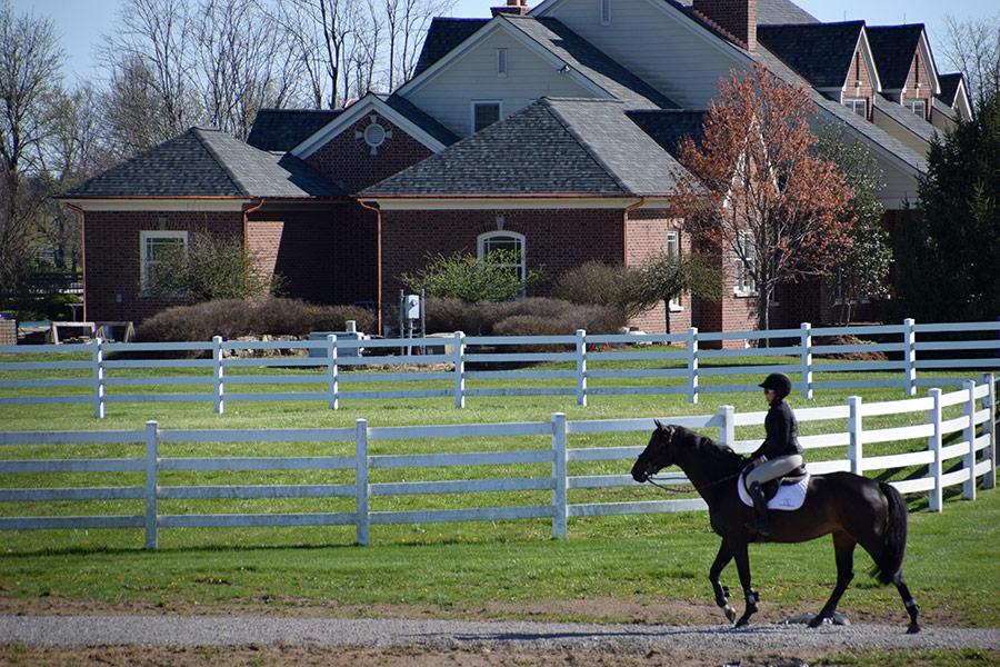 lauren hester hilaur farm