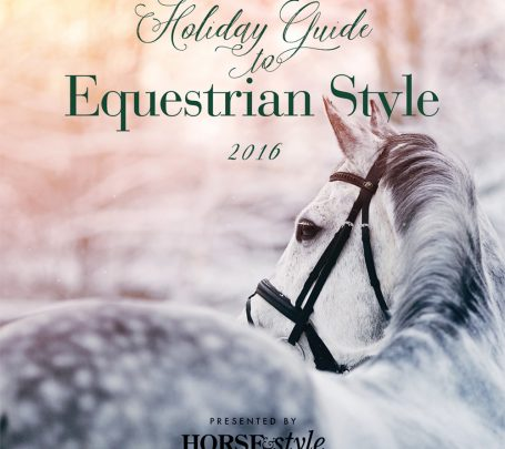hs_holidayguide_2016_cover