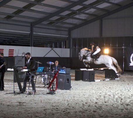 whistlejacket - equestrian music video